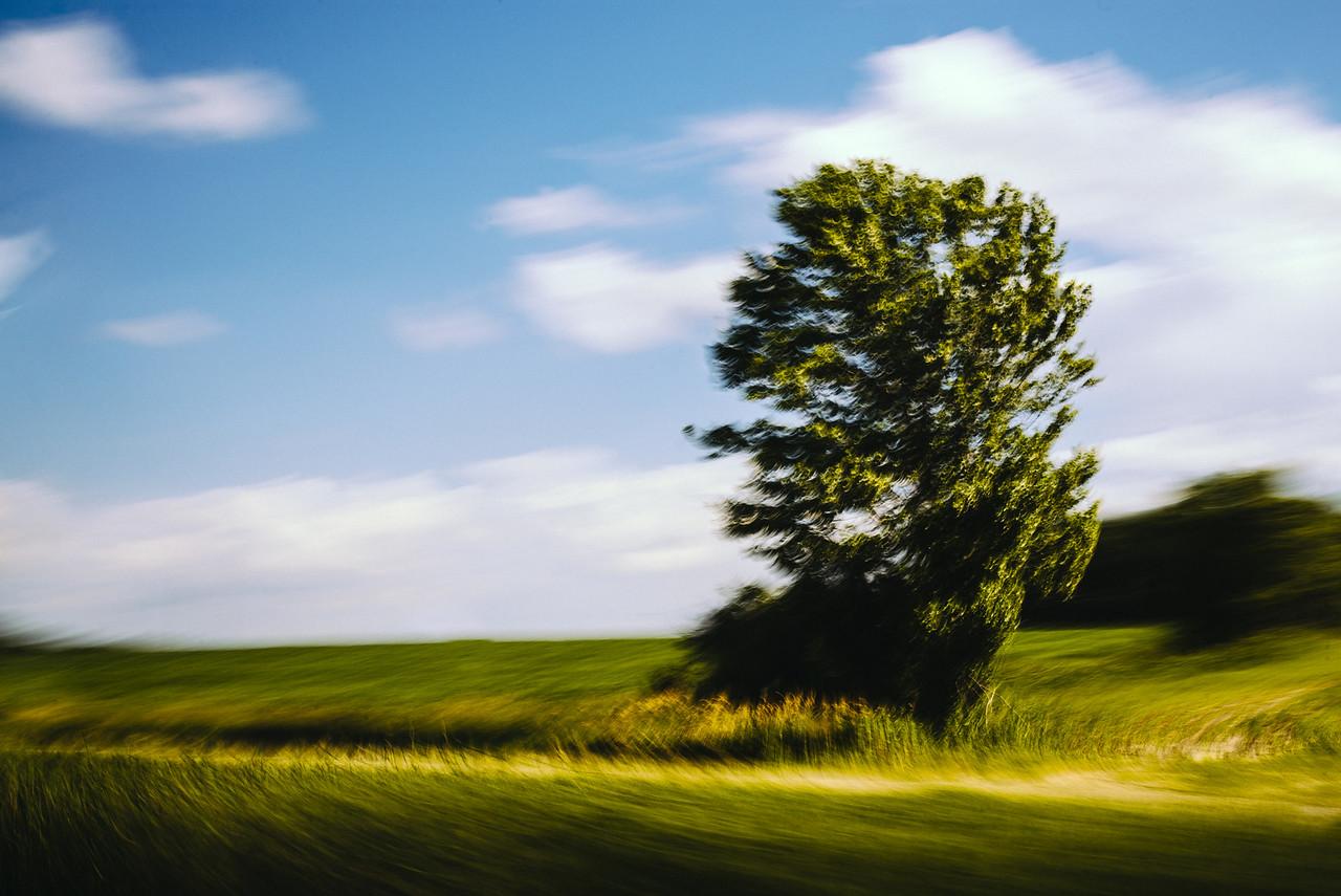 Landscapes in motion 3
