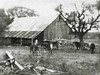 THE BARN OF OLD<br /> This is how I remember the barn (no, not cracked and out-of-focus), before it was remodeled. I'm not sure how old this photo is, but this is what it looked like on our few visits to see Aunt Clara, my grandmother Beulah's sister, both of whom were Andrew Mather's granddaughters.