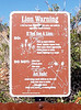 """LION WARNING<br /> <br /> Funny, they don't say anything like """"Do: Take its picture"""" anywhere on here, or """"Do not: Faint or soil your undies."""" Hmm... I'm going to have to have a talk with the Sign Committee about that."""