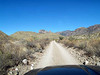 DOWN THE ROAD<br /> <br /> Pine Canyon is not for those are afraid of a little dust on -- or in -- their vehicle. You accesss it from a turn-off on the Glenn Springs Road, one of our backcountry dirt roads.