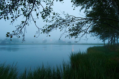 Morning Fog. Sunset Pond, Oak BLuffs