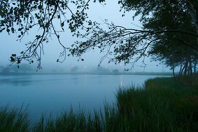 Morning Fog. Sunset Pond, Oak BLuffs