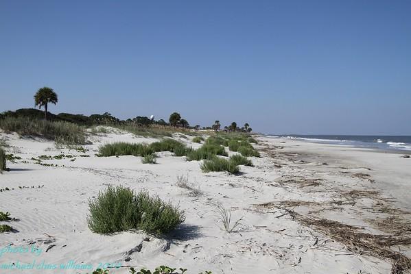 10 South Georgia Beaches