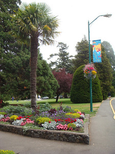 More scenic shots from Beacon Hill Park.