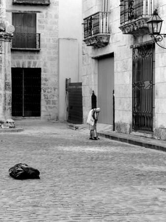 1206 Havana