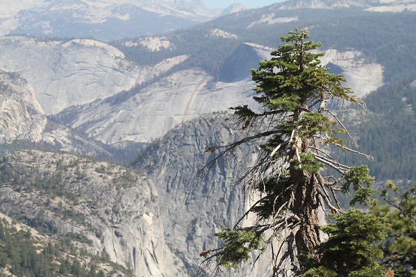 14 Yosemite End of Summer