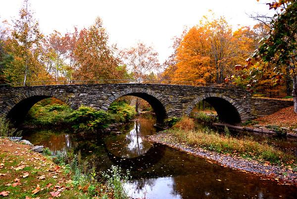 1510 Autumn Colors NY