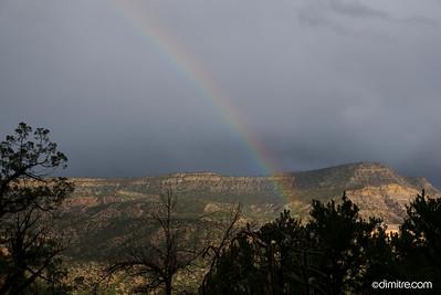 Rainbow 303