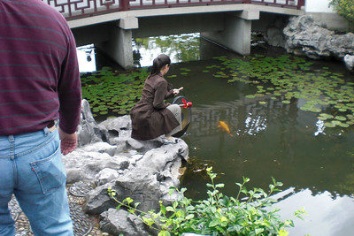 A girl bangs a gong and lowers it into the water to attract the Koi for feeding. She does this for about 5 minutes.
