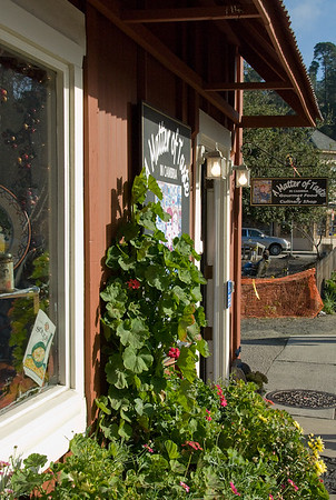 Downtown Cambria, the local gourmet cooking shop