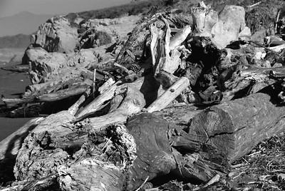 San Simeon Park, driftwood piles