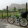 Rent a cruiser for your Palisade wine tour.  (Ricardo Baca, The Denver Post)