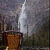 Water Falls in Yoho NP, British Columbia