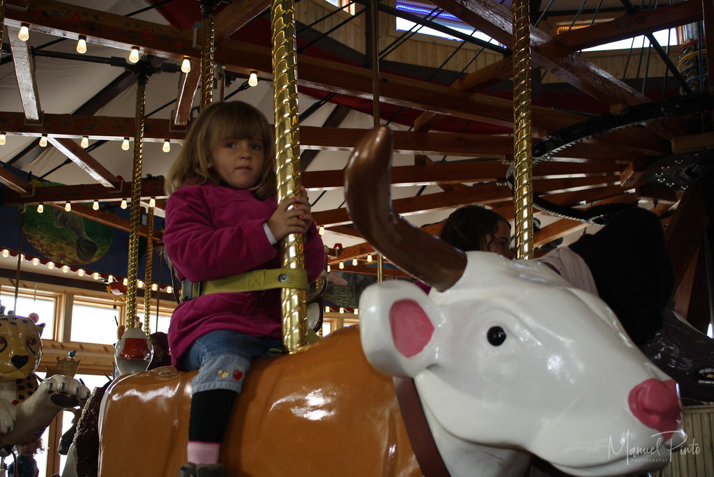 On the Carousel of Happiness