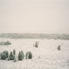Snowy field on way to Yellowstone