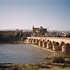 Cordoba--ancient Roman bridge still in use, and Mosque of the Caliphs/Catholic cathedral (one place)