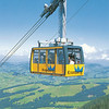 We rode a cable car to the summit of Kronberg Mt.