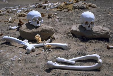 Sculls and bones Cementerio de Chauchilla Nazca, Peru