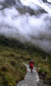 Climbing down from the 4200m pass, porter ahead Inca Trail, Peru