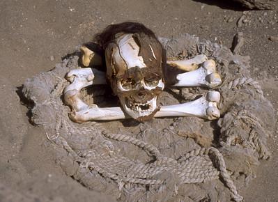 Skull Cementerio de Chauchilla Nazca, Peru