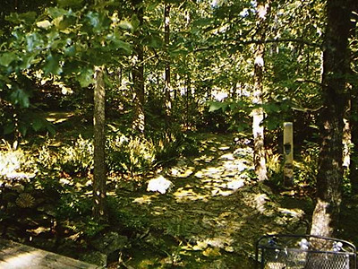 Aunt Betty's garden