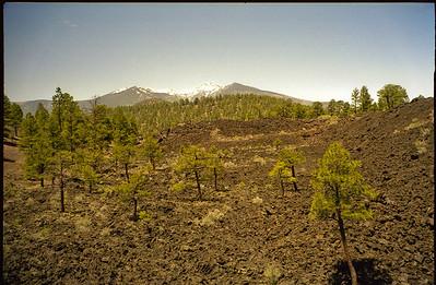 1998-07 Visit to Flagstaff