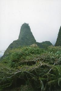 0530 - Iao Needle