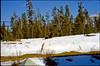 1999-02 Grrls skiing 05