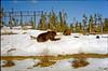 1999-02 Grrls skiing 02