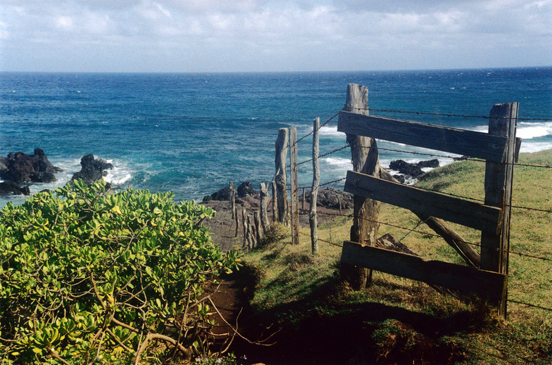 Maui: View from the rugged Hana Highway.