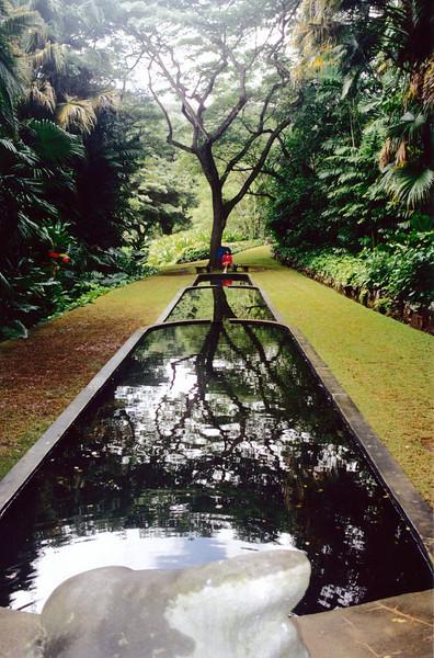 Kauai: Still in the Allerton Botanical Gardens.