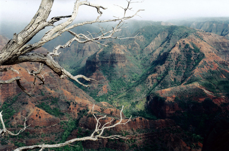 Kauai: Waimea Canyon - the Grand Canyon of Hawaii.