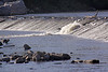 A manmade dam along the river.