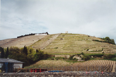 Another view of vineyards, showing a Chapel at top