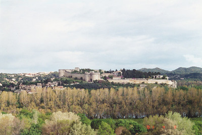 Avignon--view across river of Chateau-neuf-du-Pope