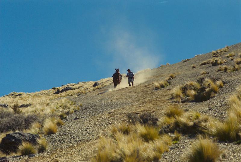 downhill02