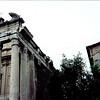 May 20:  Temple of Antoninus and Faustina, Roman Forum