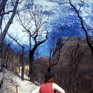 Climbing Stirling Ranges National Park Western Australia