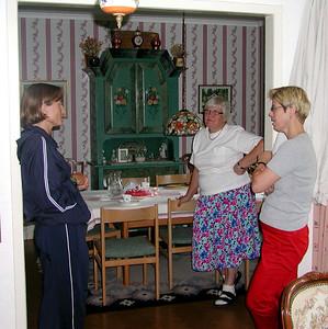 004 - 2002 07 Kungsangen