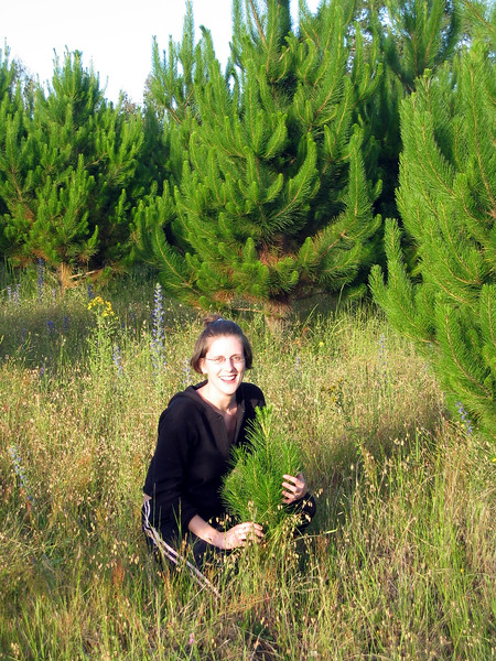 At the property, Lisa with the runt tree