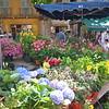aix flower market