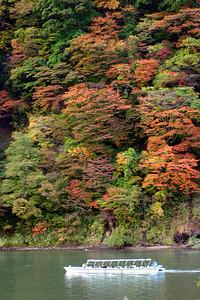 最上川遊船與山上的楓紅,奧入瀨溪流都不夠紅了,更南邊的最上川自然也是不紅