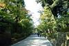 京都金閣寺的參道