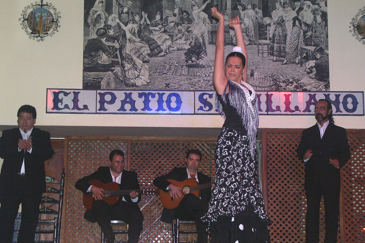You just gotta see the Flamenco show in Seville.