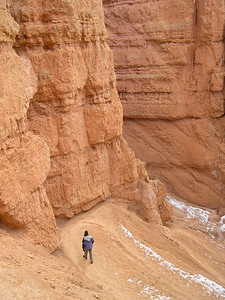 Navajo trail in the Bryce Canyon NV USA