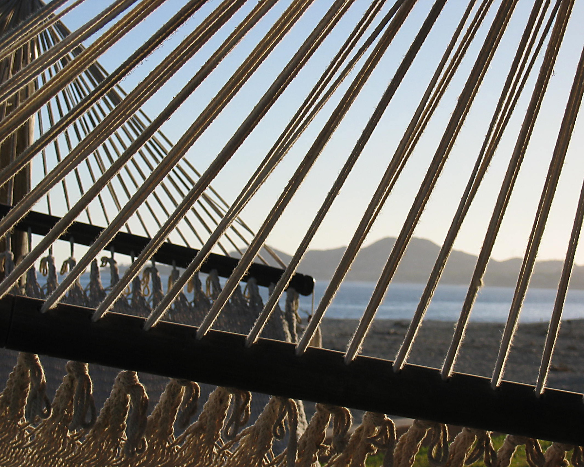 A part of a hammock on the hotel grounds.
