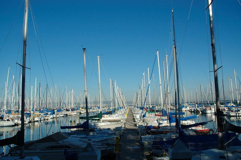 左外野外側的遊艇港