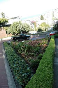 Z字型路線是為了降低路線的坡度,而在路旁的三角區域均種植了各類花卉,故又稱為花園街