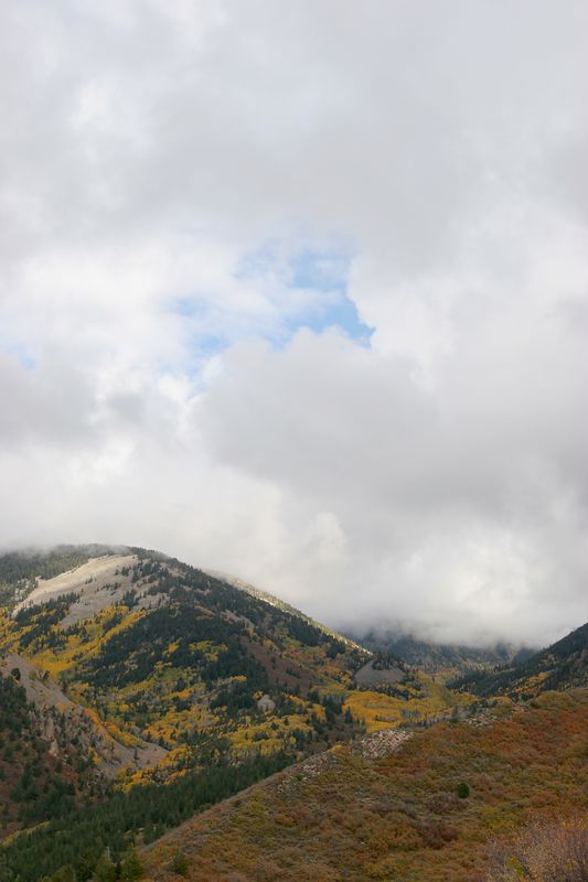 Utah, La Sal Mountains, Manti-La Sal National Forest