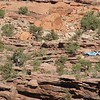 Utah, Behind the Rocks, Here is a close up of the trucks from the frevious photo